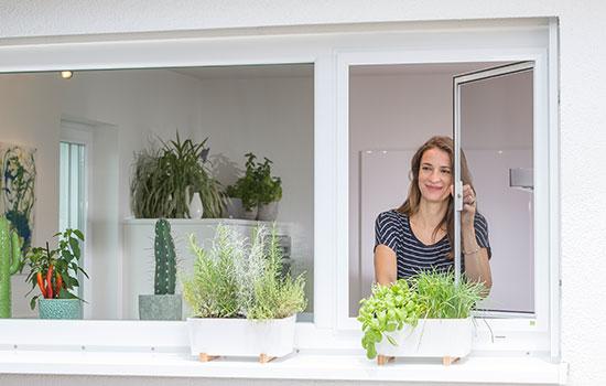 Verkauf und Einbau von Insektenschutzrollos von Seeckts Bauelemente in Göttingen